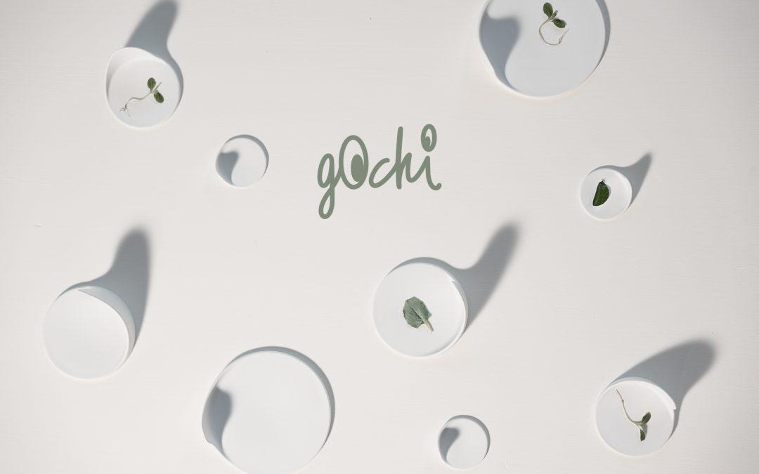 Nieuw: Cookplay Gochi